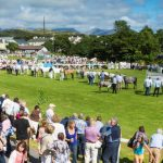 Connemara Pony Show Festival: 14 August 2019 – 17 August 2019