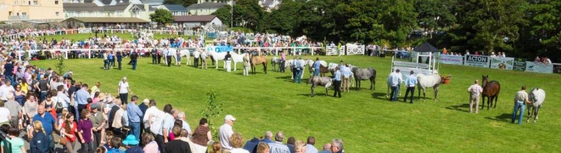 Connemara Pony Show Festival: 14 August 2019 – 17 August 2019